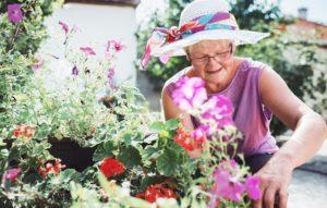 Avantages du jardinage pour la santé physique - image