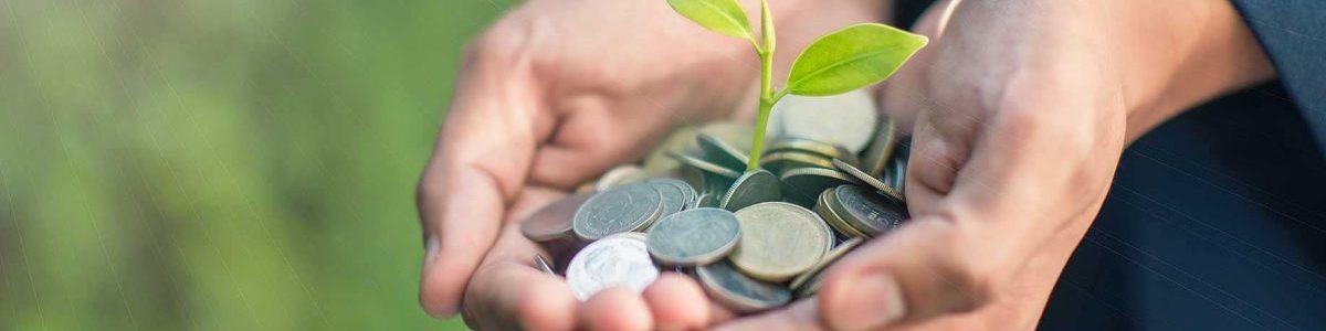 Investissement et épargne